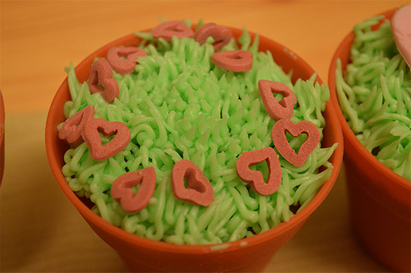 Valentines Cupcake Ideas Icing Hearts Piped Grass