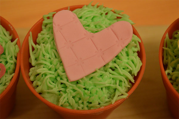 Valentines Cupcake Ideas Sugarpaste Heart Piped Grass