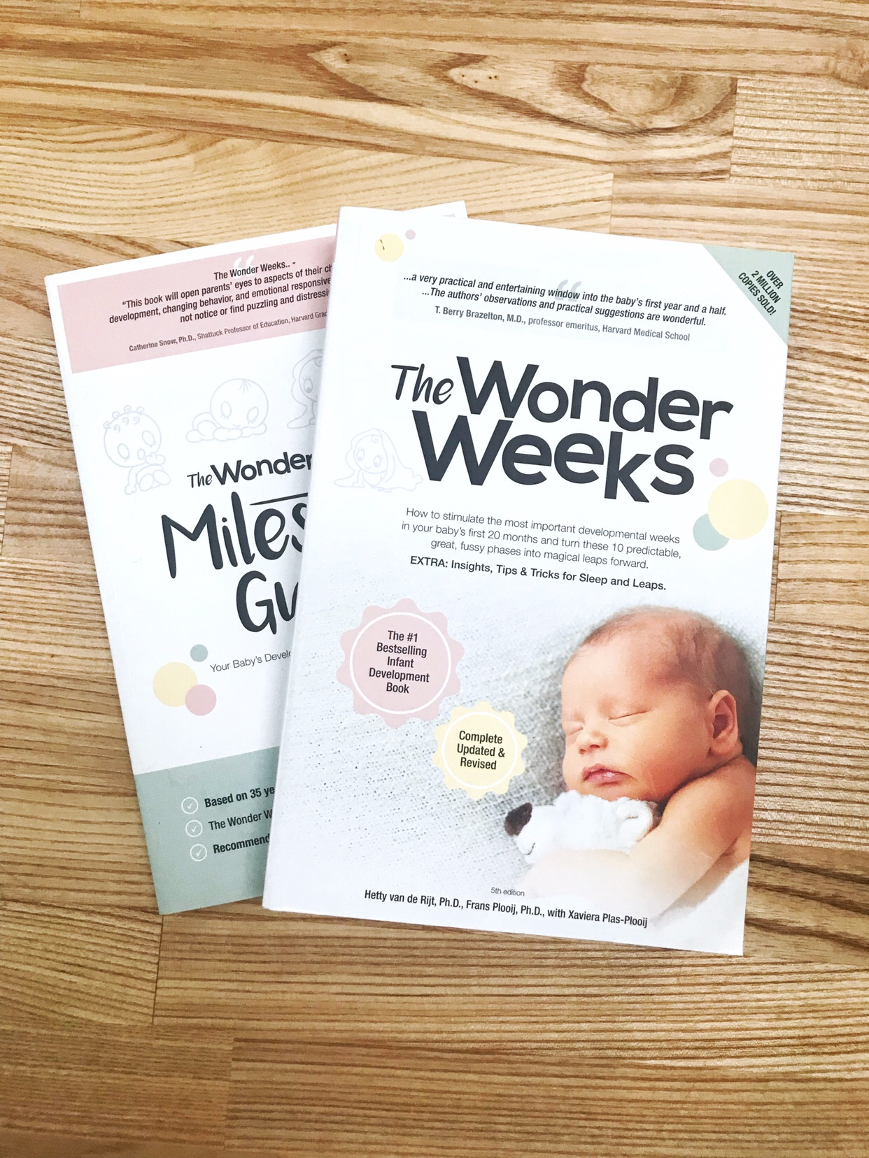 New Mum Reading List: The Wonder Weeks - Hetty van de Rijt